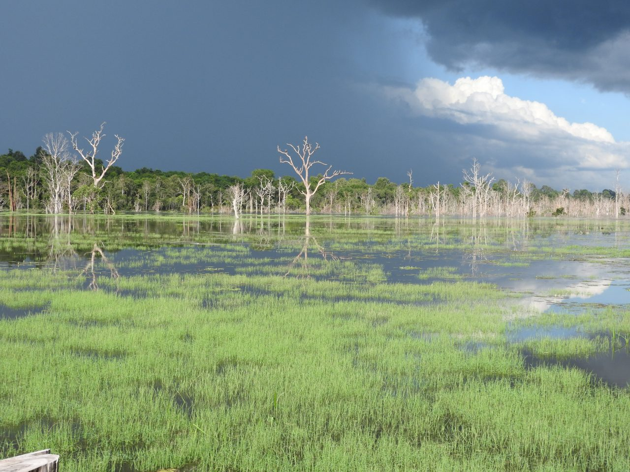Siem Reap Province, Cambodia