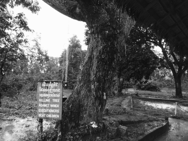 The Killing Tree, Killing Fields​, Cambodia